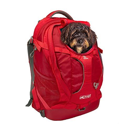 Kurgo G-Train Hunderucksack, Rucksack für Hunde bis 11kg,...